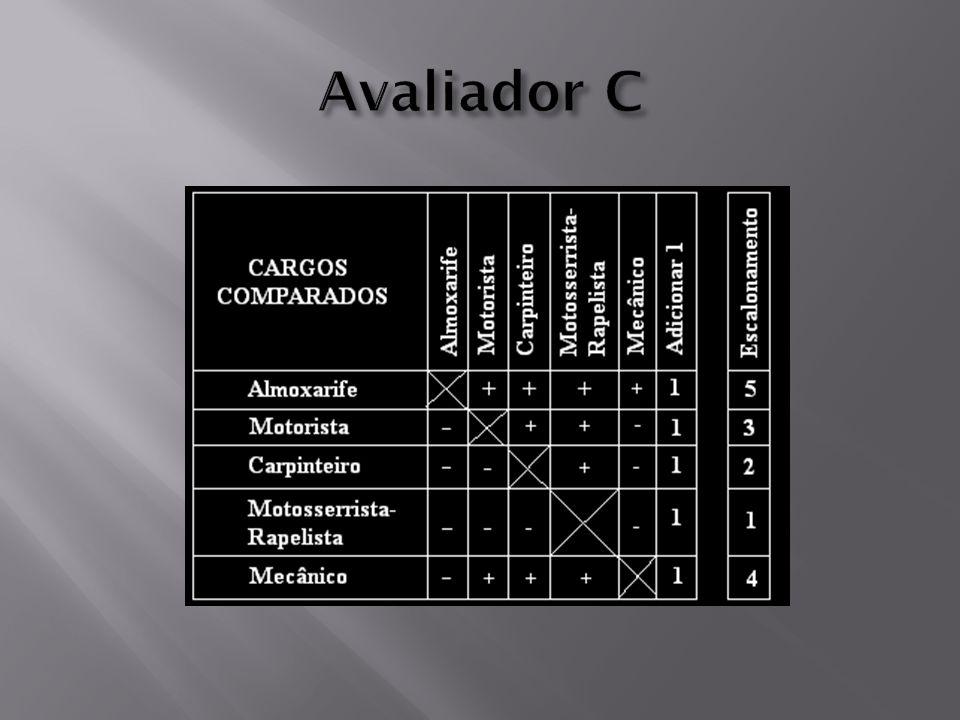 Avaliador C
