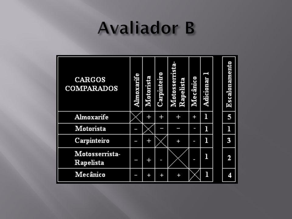 Avaliador B