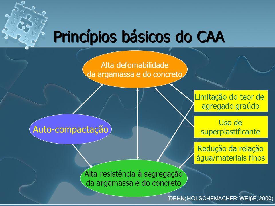 Princípios básicos do CAA