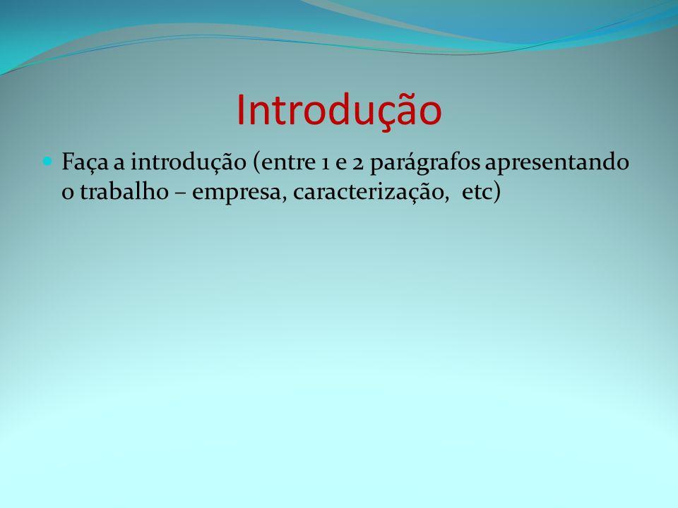 Introdução Faça a introdução (entre 1 e 2 parágrafos apresentando o trabalho – empresa, caracterização, etc)