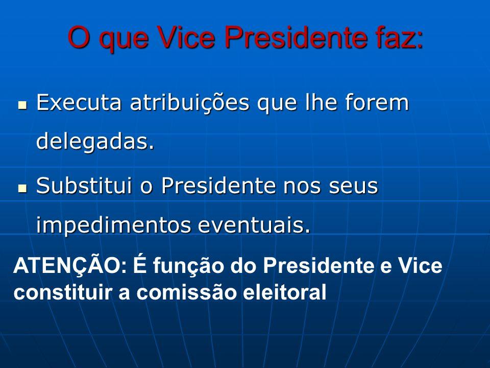 O que Vice Presidente faz: