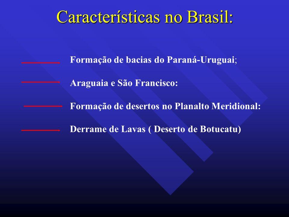 Características no Brasil: