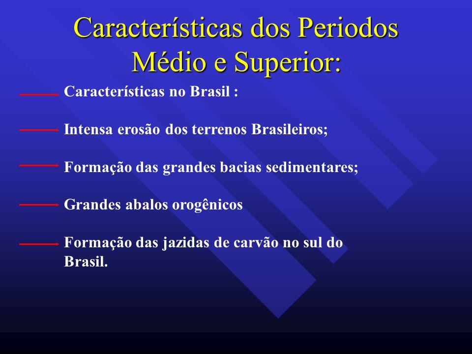 Características dos Periodos Médio e Superior: