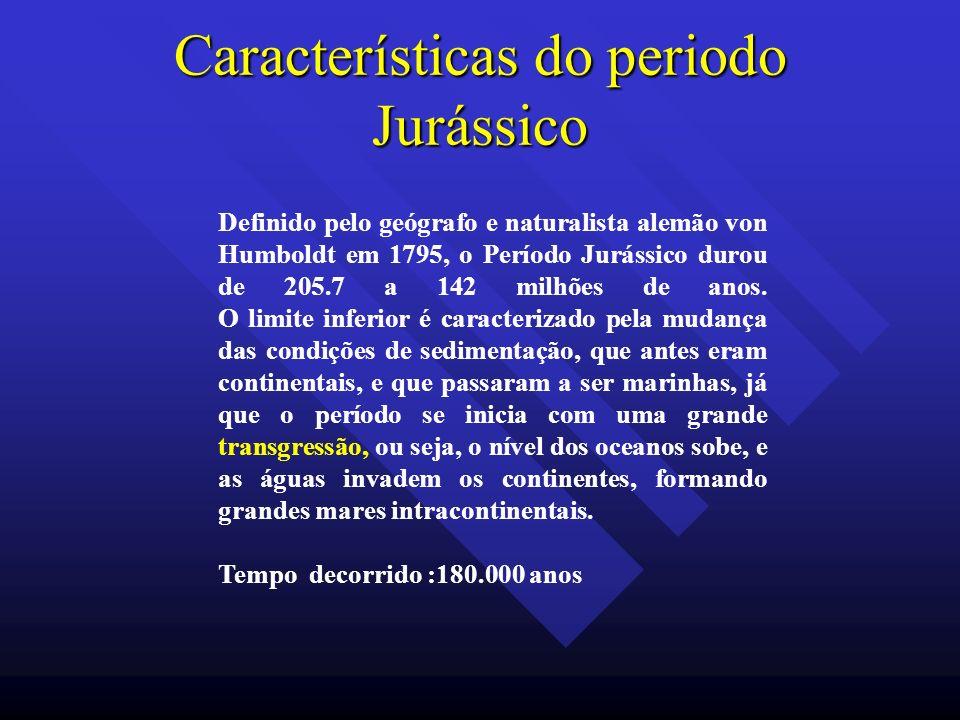 Características do periodo Jurássico