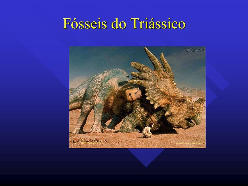 Fósseis do Triássico