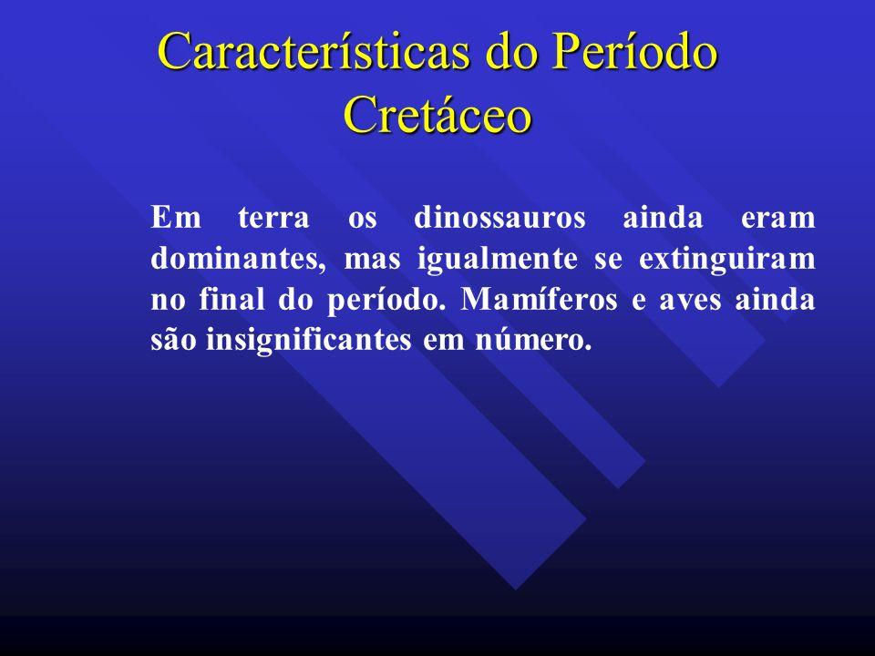 Características do Período Cretáceo