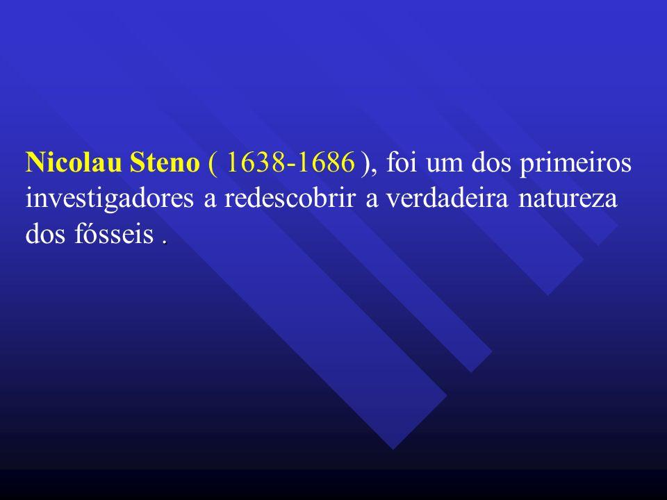 Nicolau Steno ( 1638-1686 ), foi um dos primeiros investigadores a redescobrir a verdadeira natureza dos fósseis .