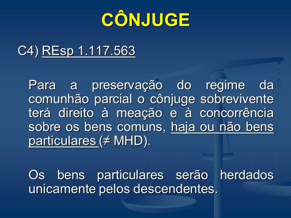 CÔNJUGEC4) REsp 1.117.563.