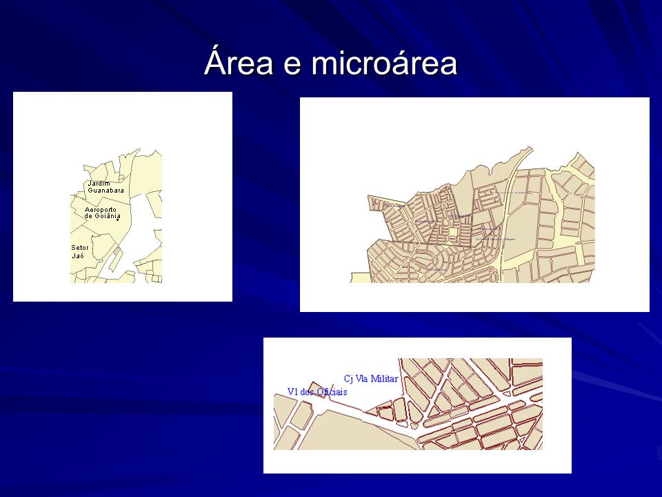 Área e microárea