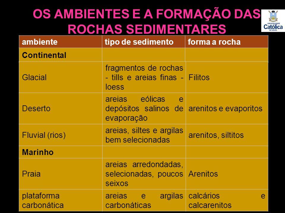 OS AMBIENTES E A FORMAÇÃO DAS ROCHAS SEDIMENTARES