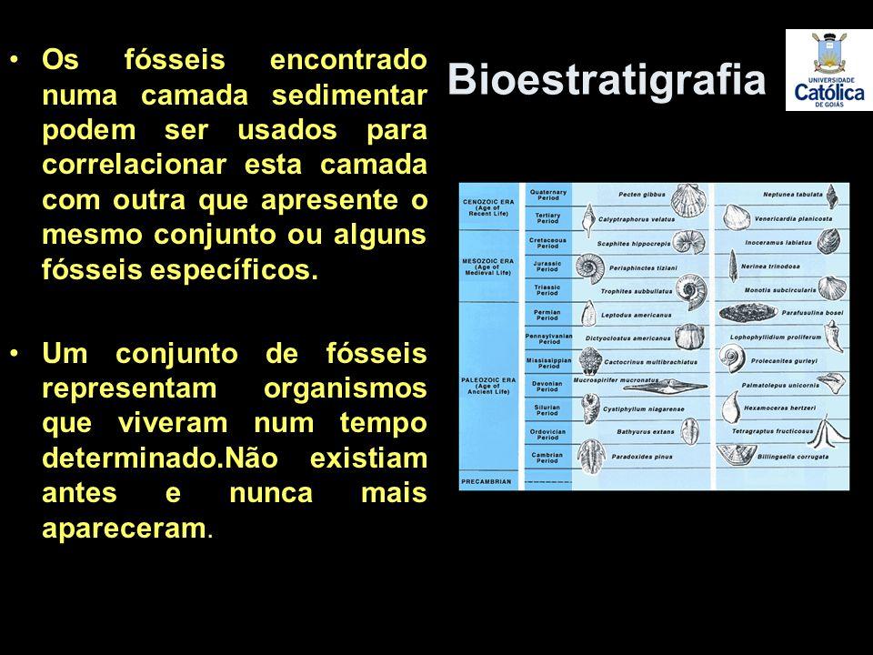 Os fósseis encontrado numa camada sedimentar podem ser usados para correlacionar esta camada com outra que apresente o mesmo conjunto ou alguns fósseis específicos.