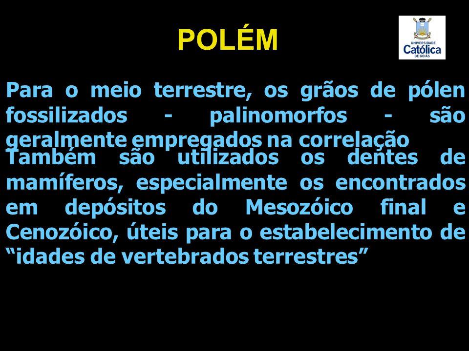POLÉM Para o meio terrestre, os grãos de pólen fossilizados - palinomorfos - são geralmente empregados na correlação.