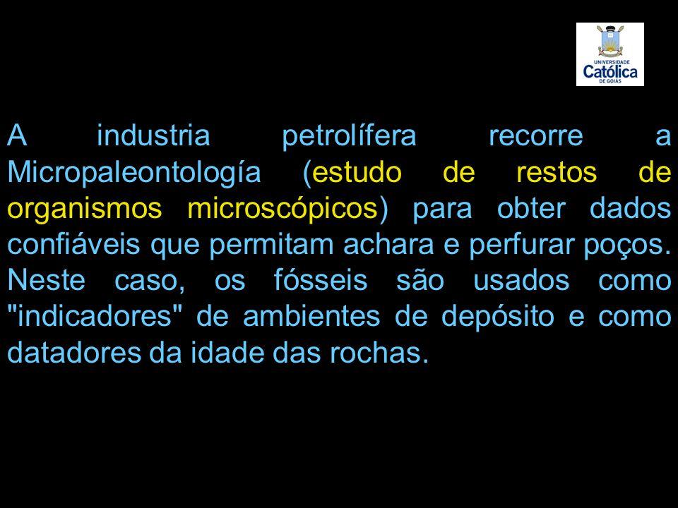 A industria petrolífera recorre a Micropaleontología (estudo de restos de organismos microscópicos) para obter dados confiáveis que permitam achara e perfurar poços.
