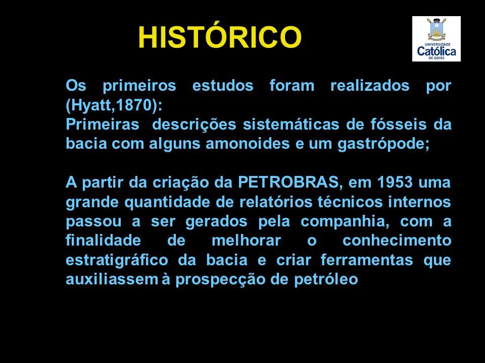 HISTÓRICO Os primeiros estudos foram realizados por (Hyatt,1870):