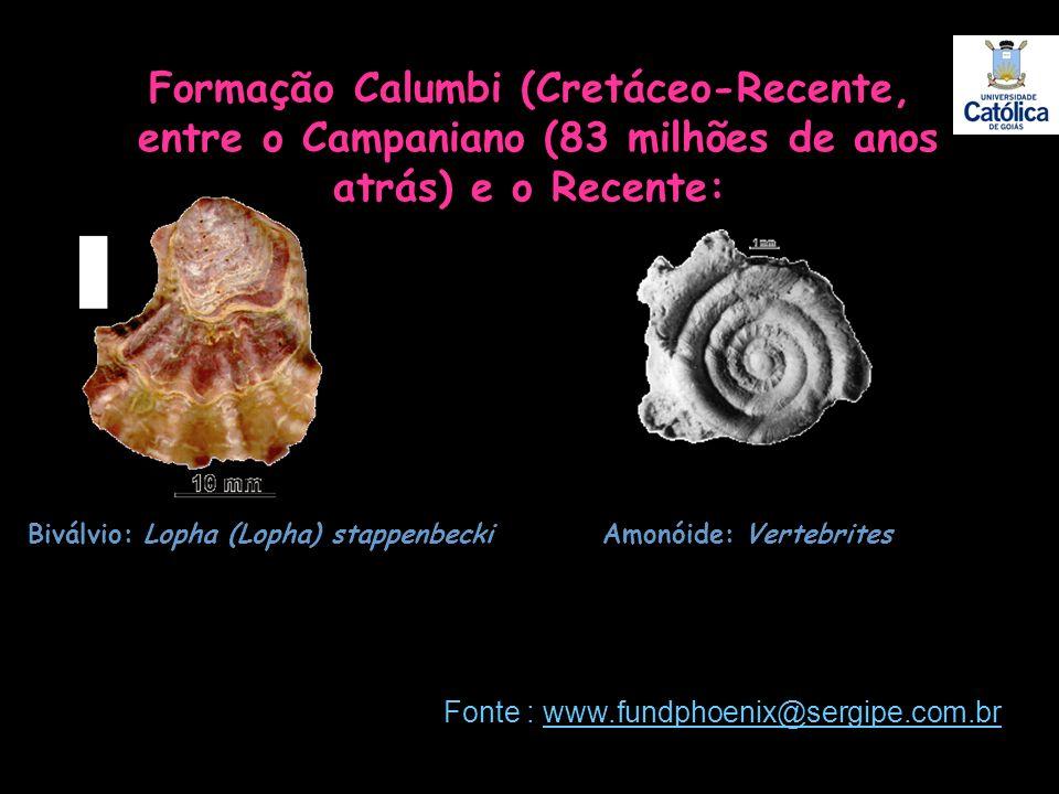 Formação Calumbi (Cretáceo-Recente, entre o Campaniano (83 milhões de anos atrás) e o Recente: