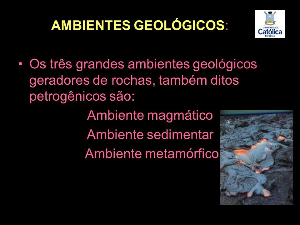 AMBIENTES GEOLÓGICOS:
