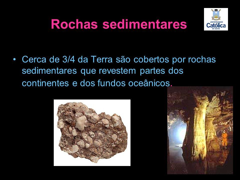 Rochas sedimentares Cerca de 3/4 da Terra são cobertos por rochas sedimentares que revestem partes dos continentes e dos fundos oceânicos.