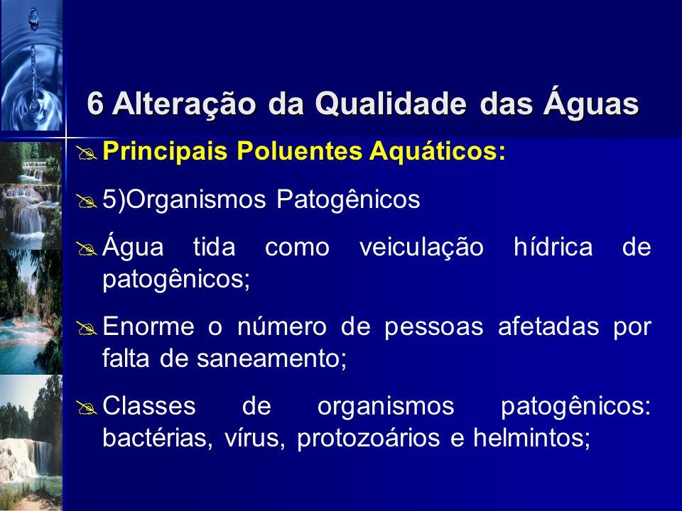 6 Alteração da Qualidade das Águas