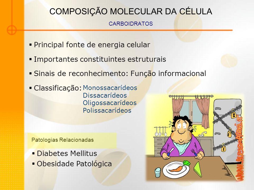 COMPOSIÇÃO MOLECULAR DA CÉLULA CARBOIDRATOS