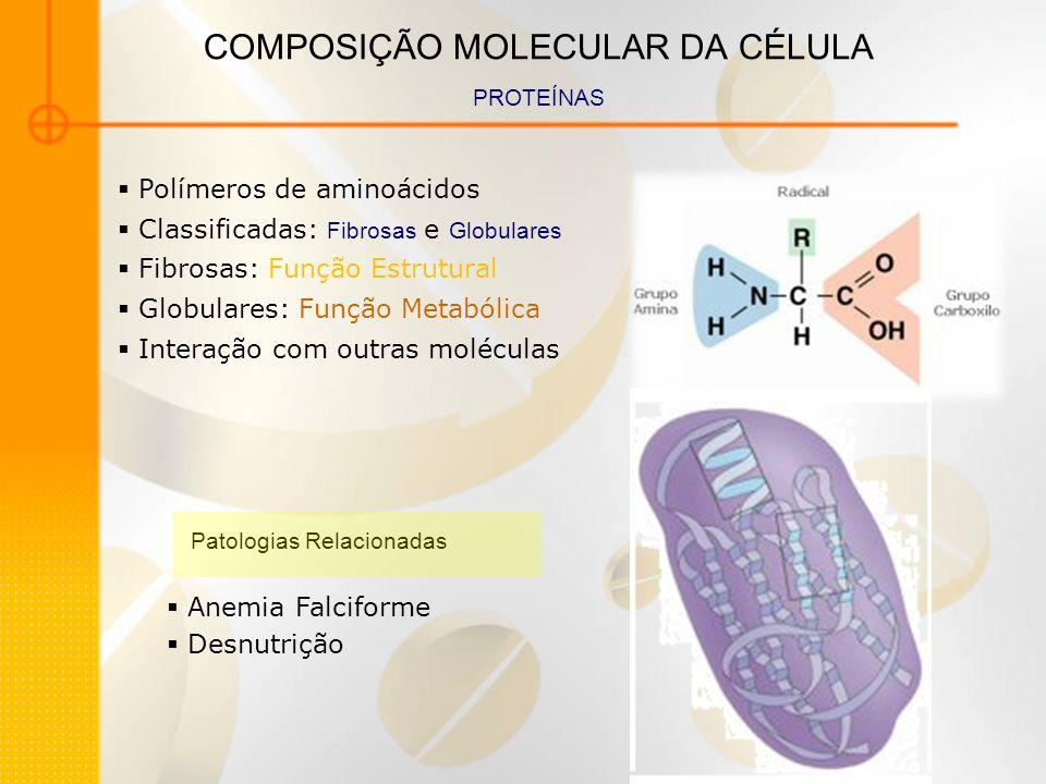 COMPOSIÇÃO MOLECULAR DA CÉLULA PROTEÍNAS