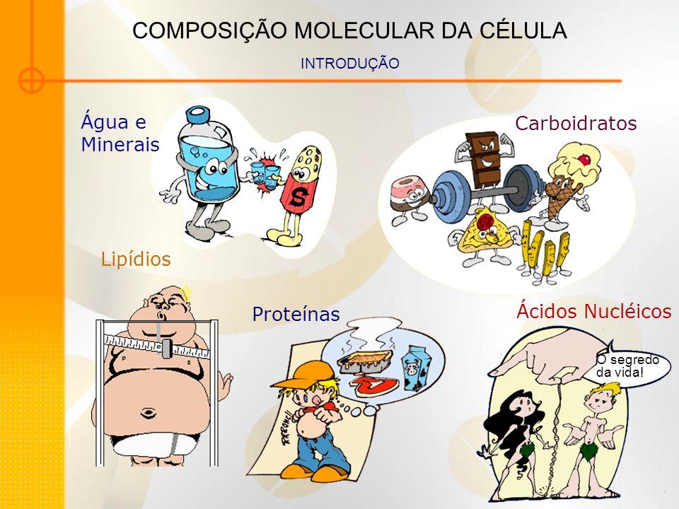 COMPOSIÇÃO MOLECULAR DA CÉLULA INTRODUÇÃO