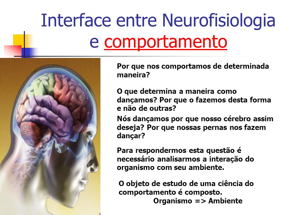 Interface entre Neurofisiologia e comportamento