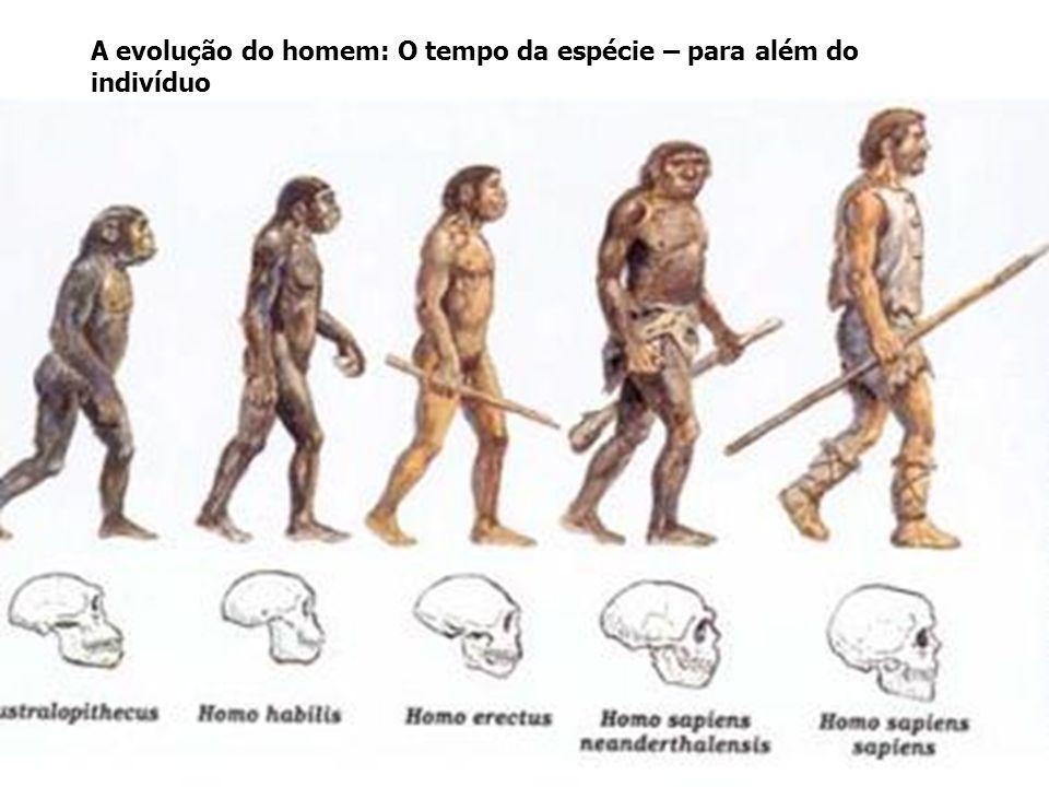 A evolução do homem: O tempo da espécie – para além do indivíduo