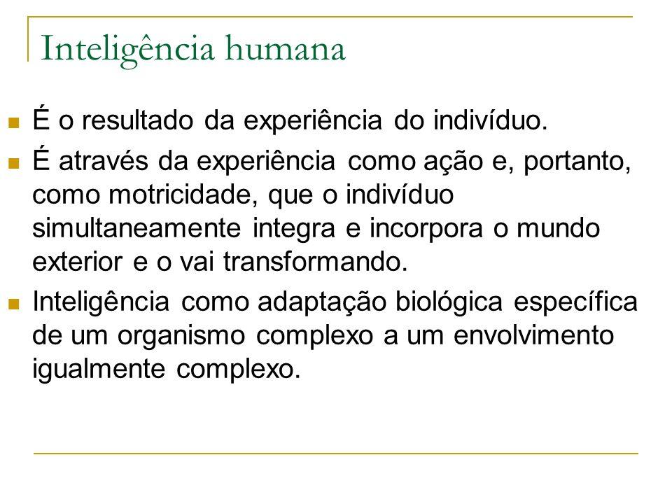 Inteligência humana É o resultado da experiência do indivíduo.