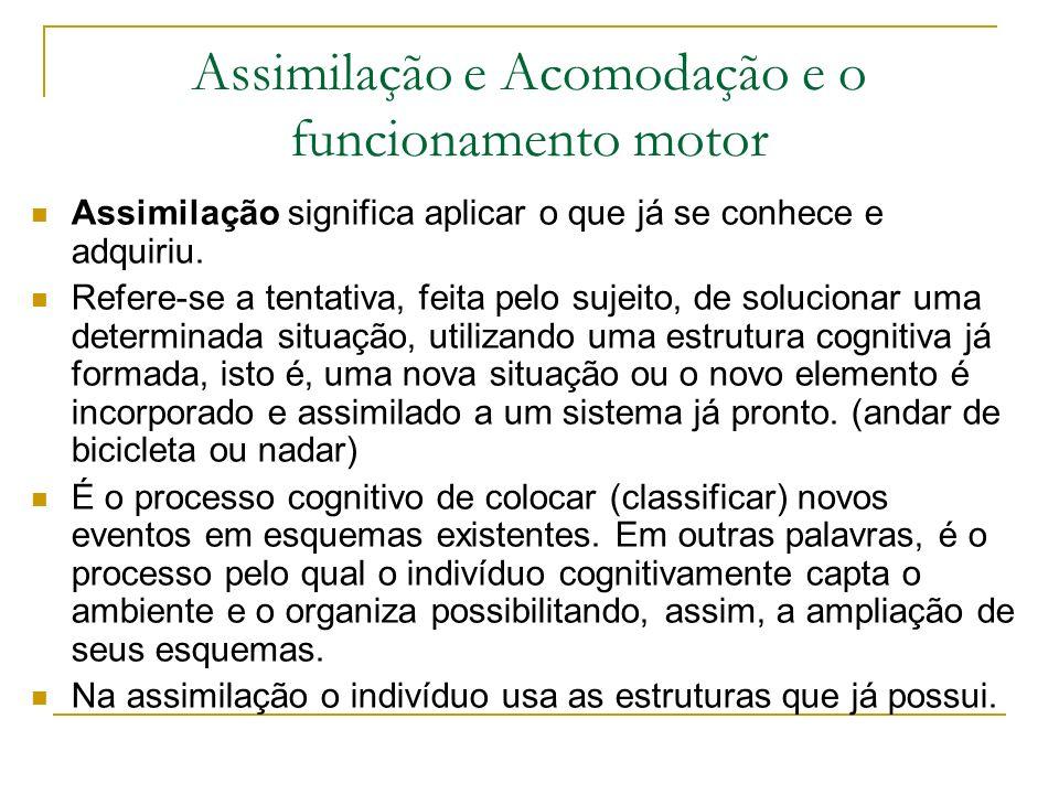 Assimilação e Acomodação e o funcionamento motor
