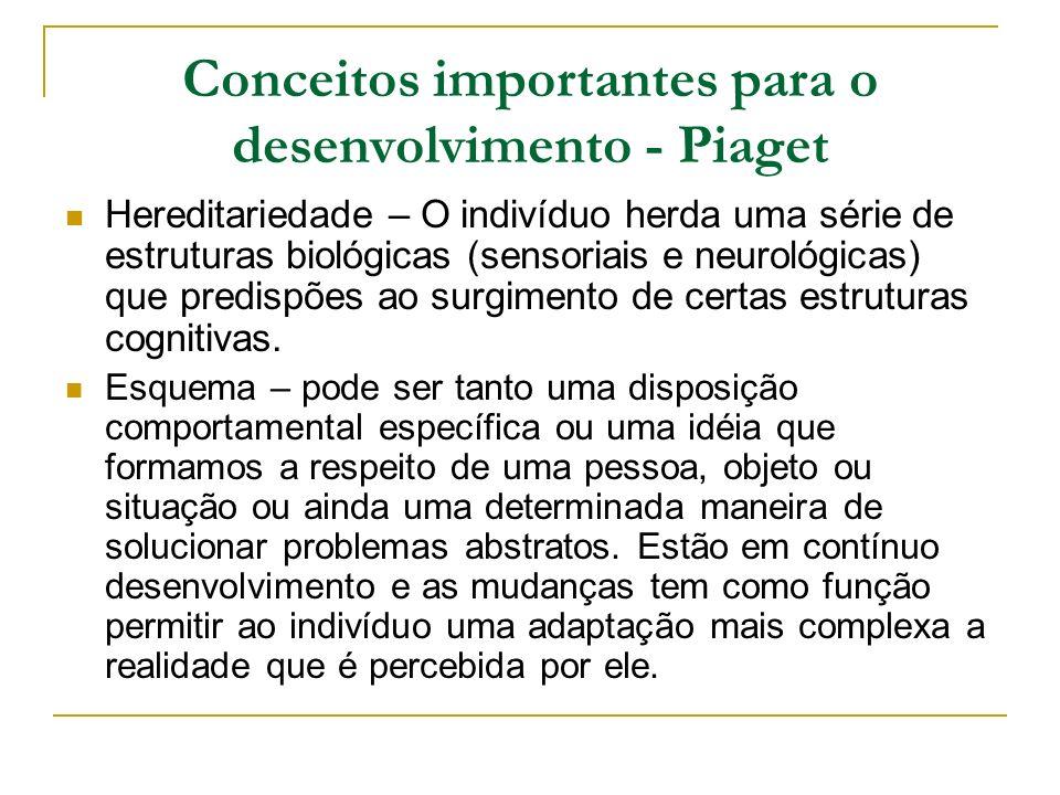 Conceitos importantes para o desenvolvimento - Piaget