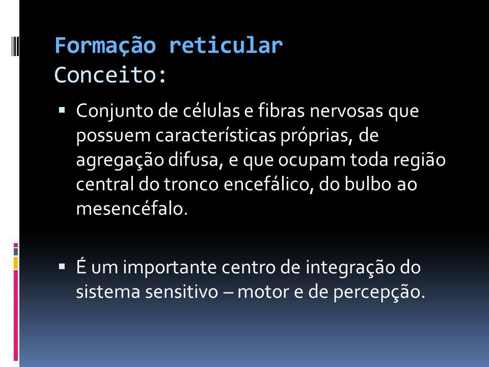 Formação reticular Conceito: