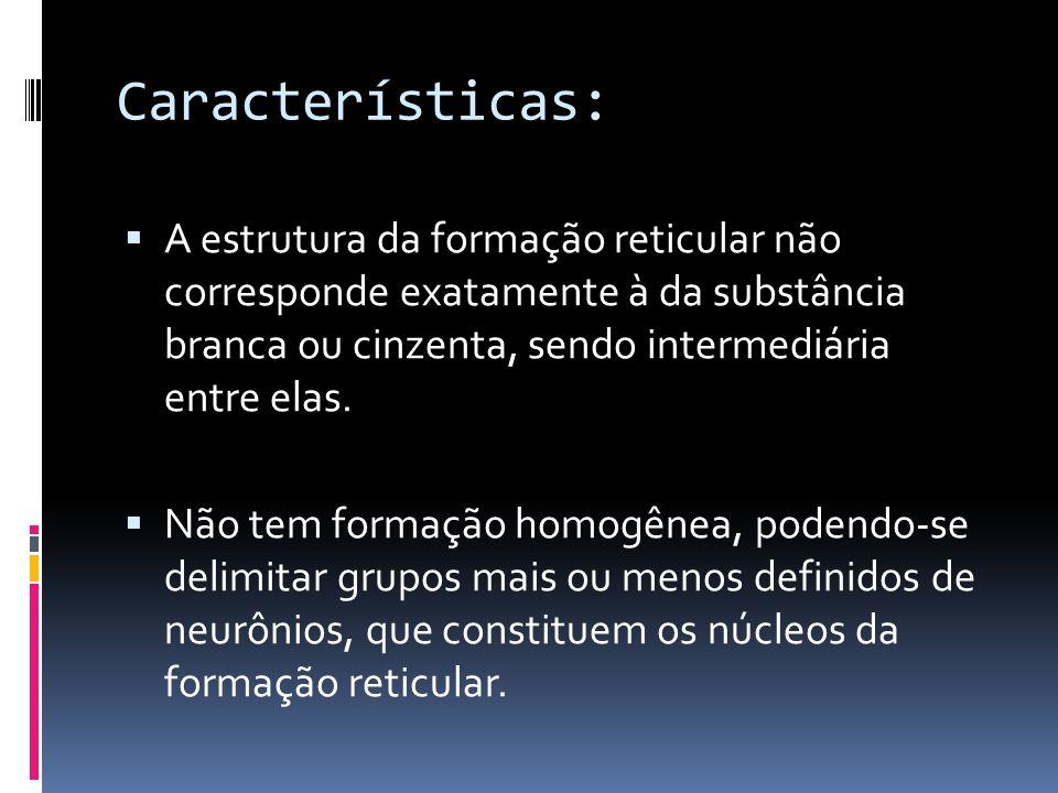 Características:A estrutura da formação reticular não corresponde exatamente à da substância branca ou cinzenta, sendo intermediária entre elas.