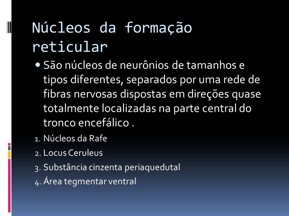 Núcleos da formação reticular