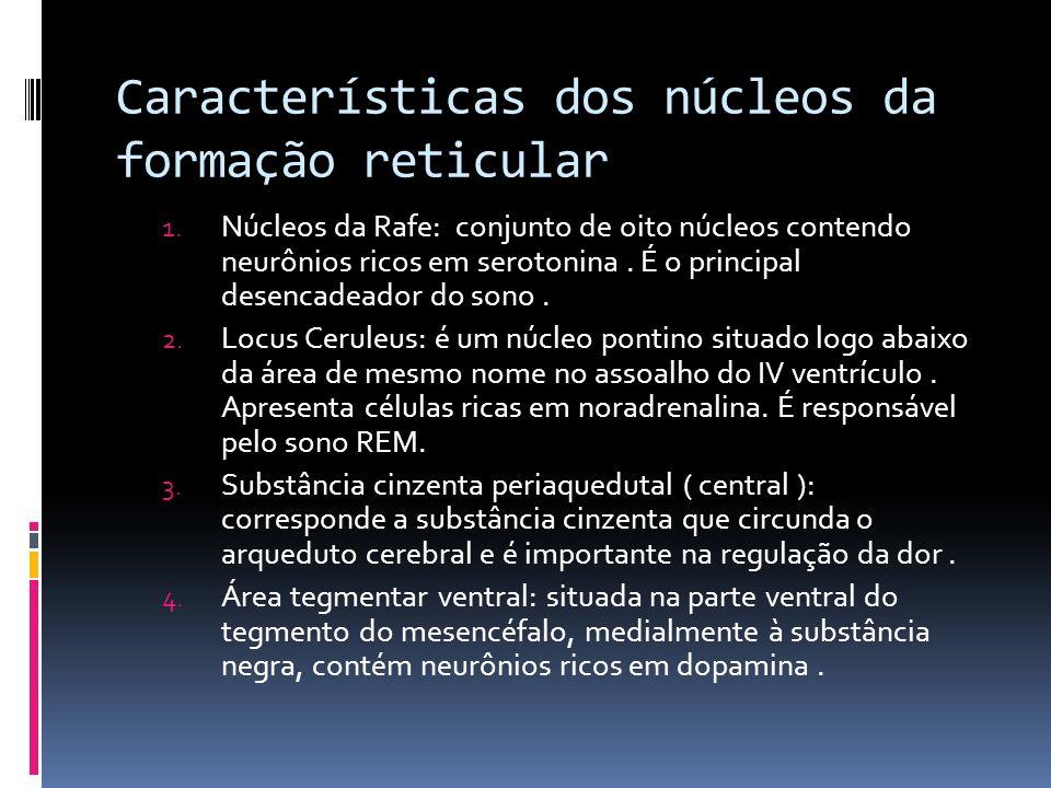 Características dos núcleos da formação reticular