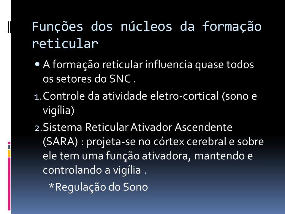 Funções dos núcleos da formação reticular