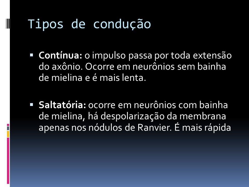 Tipos de conduçãoContínua: o impulso passa por toda extensão do axônio. Ocorre em neurônios sem bainha de mielina e é mais lenta.