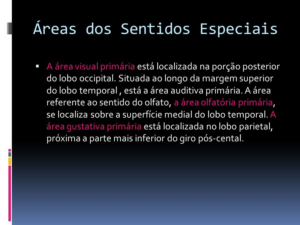 Áreas dos Sentidos Especiais