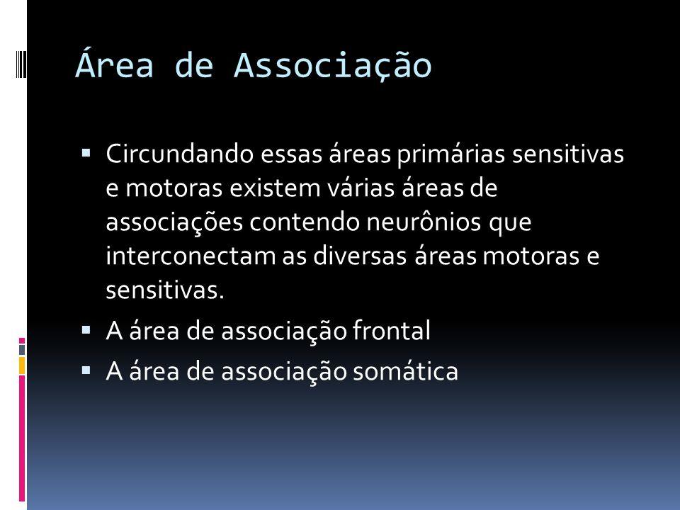 Área de Associação