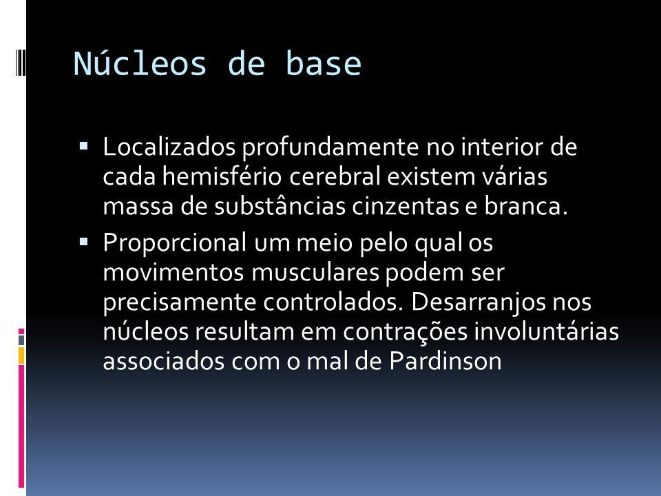 Núcleos de baseLocalizados profundamente no interior de cada hemisfério cerebral existem várias massa de substâncias cinzentas e branca.
