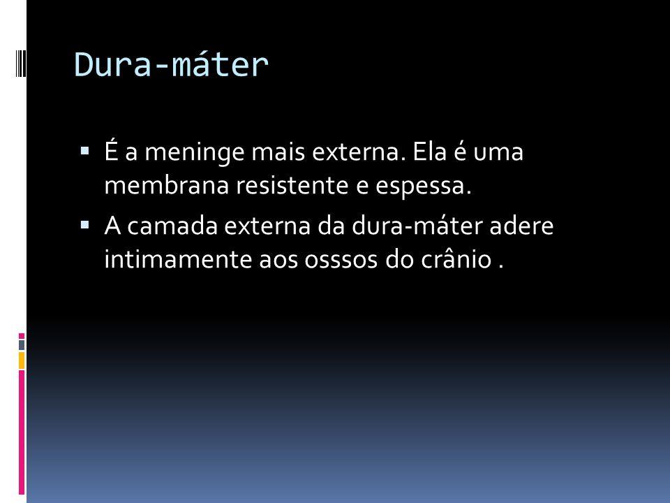 Dura-máter É a meninge mais externa. Ela é uma membrana resistente e espessa.