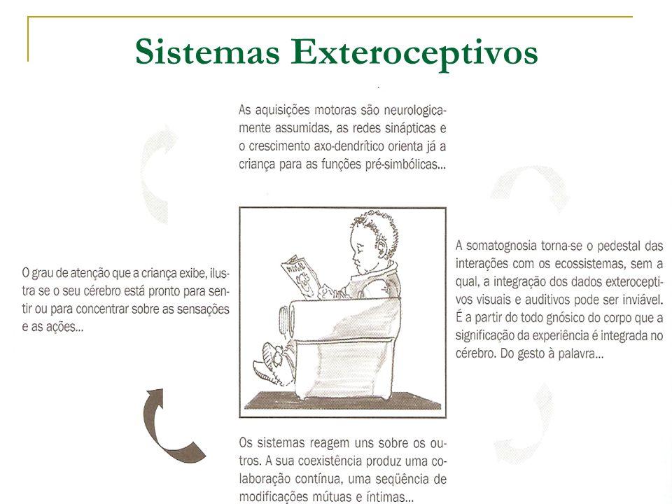 Sistemas Exteroceptivos