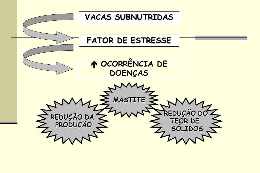  OCORRÊNCIA DE DOENÇAS