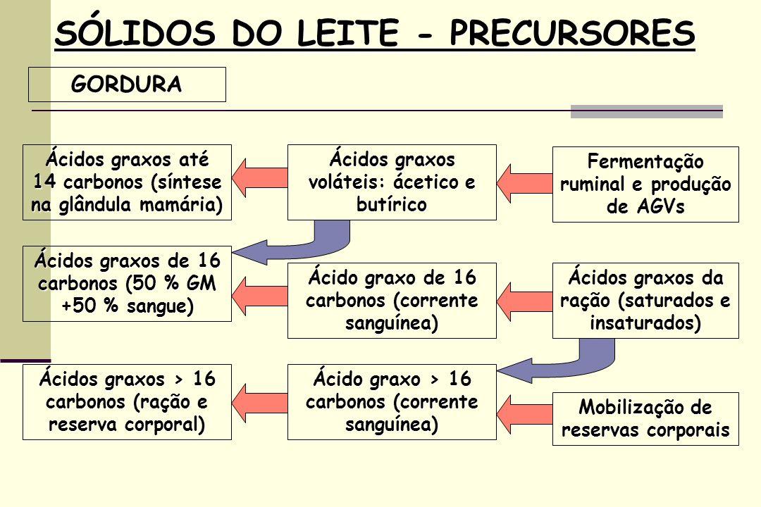 SÓLIDOS DO LEITE - PRECURSORES