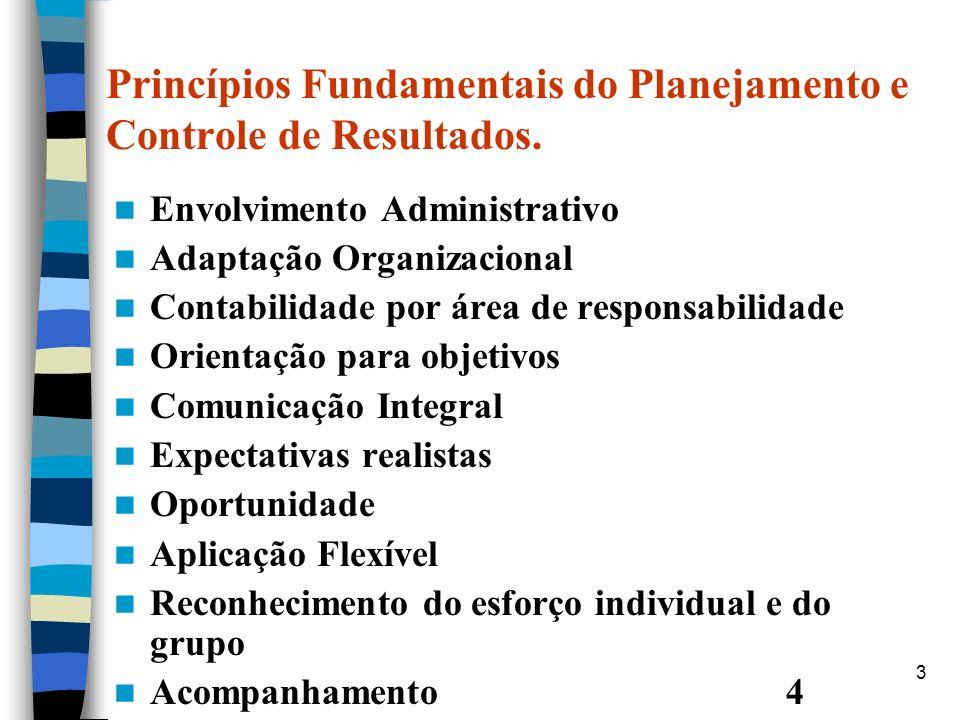 Princípios Fundamentais do Planejamento e Controle de Resultados.