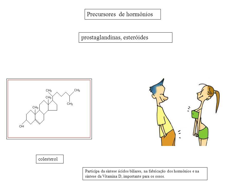 Precursores de hormônios