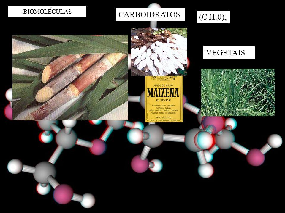 BIOMOLÉCULAS CARBOIDRATOS (C H20)n VEGETAIS