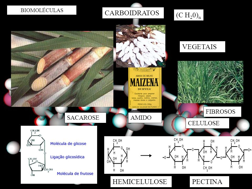 CARBOIDRATOS (C H20)n VEGETAIS HEMICELULOSE PECTINA FIBROSOS SACAROSE