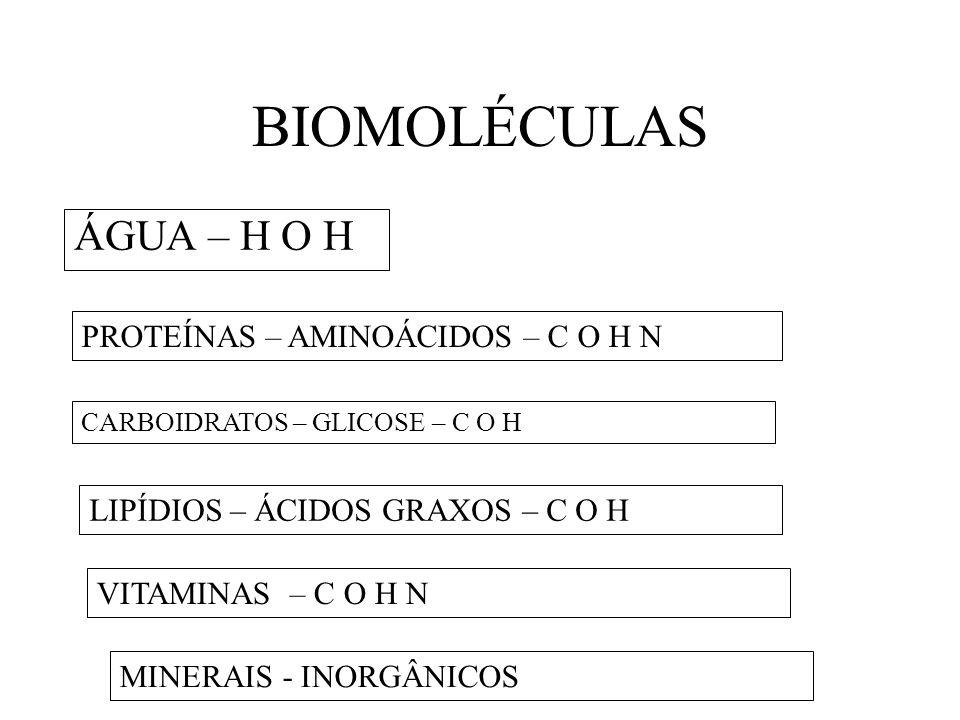 BIOMOLÉCULAS ÁGUA – H O H PROTEÍNAS – AMINOÁCIDOS – C O H N
