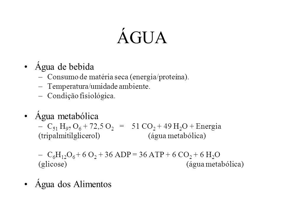 ÁGUA Água de bebida Água metabólica Água dos Alimentos