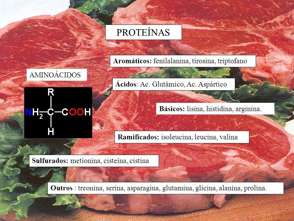 PROTEÍNAS Aromáticos: fenilalanina, tirosina, triptofano AMINOÁCIDOS